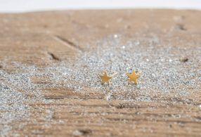 Stardust Pendientes y Anillos / Earrings and Rings