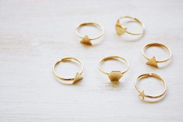 Fauna y Flora anillos