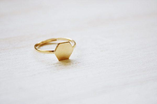 Fauna y Flora anillo hexágono geométrico