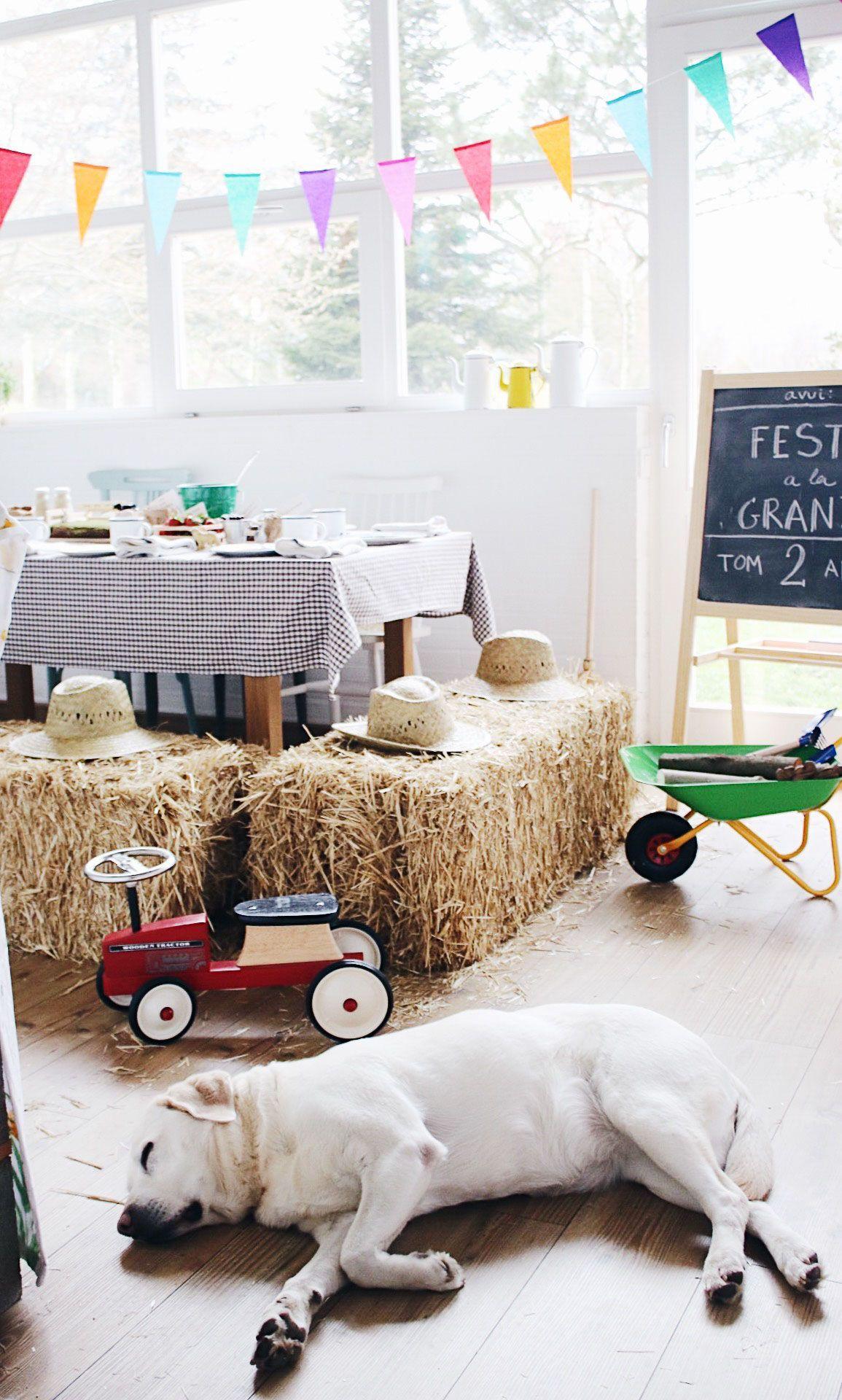 Fiesta y detalles de decoración cumpleaños de Tom 2 años fiesta en la granja