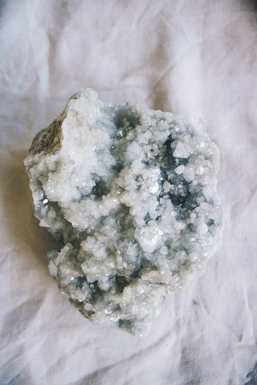 Drusa Celestina Selected Crystals Fauna y Flora