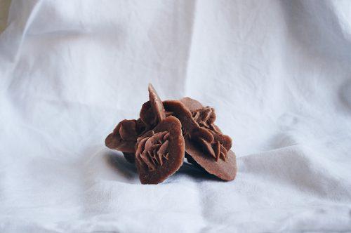 Rosa del desierto Selected Crystals de Fauna y Flora