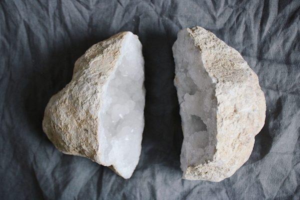 Geoda Cuarzo Selected Crystals Fauna y Flora